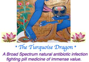 Turquoise Dragon Pills